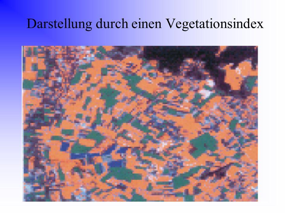Darstellung durch einen Vegetationsindex