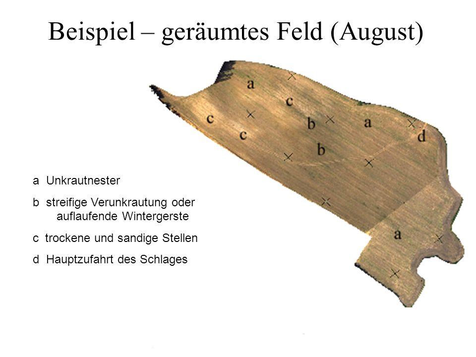 Beispiel – geräumtes Feld (August) a Unkrautnester b streifige Verunkrautung oder auflaufende Wintergerste c trockene und sandige Stellen d Hauptzufah