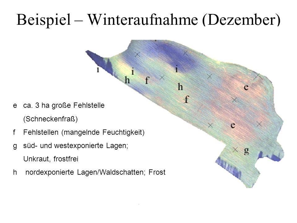 Beispiel – Winteraufnahme (Dezember) e ca. 3 ha große Fehlstelle (Schneckenfraß) f Fehlstellen (mangelnde Feuchtigkeit) g süd- und westexponierte Lage