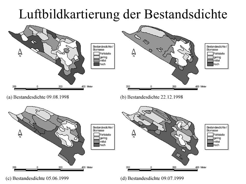Luftbildkartierung der Bestandsdichte