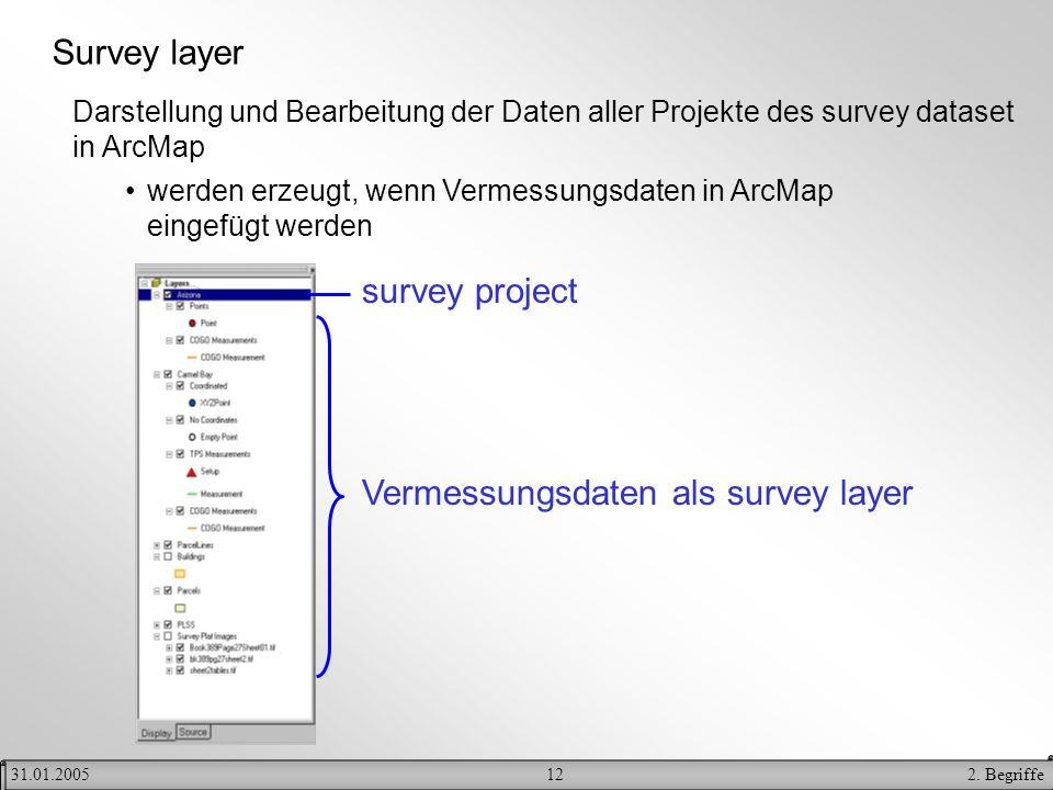 122. Begriffe31.01.2005 Survey layer Darstellung und Bearbeitung der Daten aller Projekte des survey dataset in ArcMap werden erzeugt, wenn Vermessung