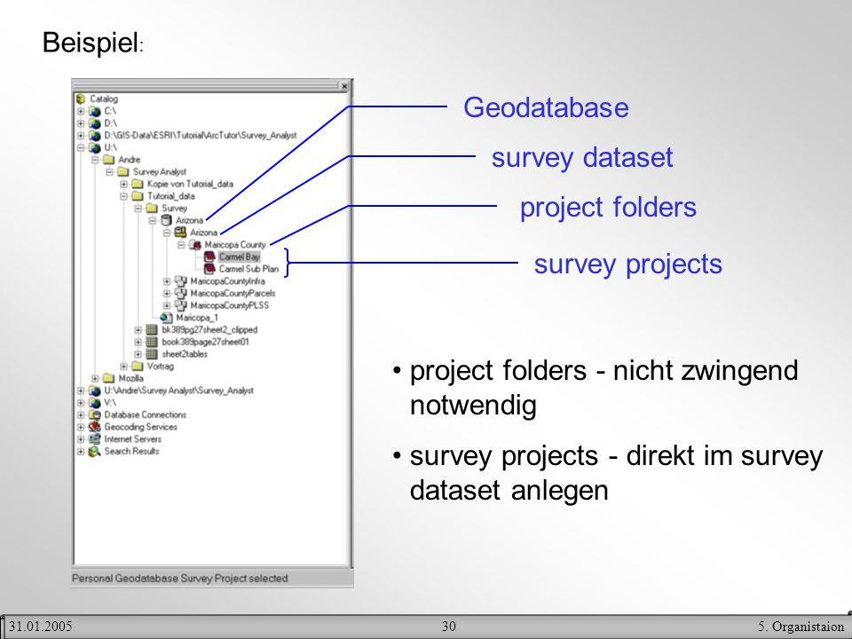 305. Organistaion31.01.2005 Beispiel : Geodatabase survey dataset project folders survey projects project folders - nicht zwingend notwendig survey pr
