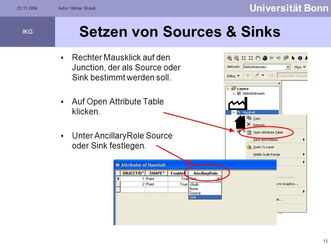 12 Universität Bonn IKG 23.11.2004Autor: Hilmar Strauß Sources & Sinks Source = Quelle Beispiel: Pumpe, Elektrizitätswerk, etc. Sink = Abfluss Beispie