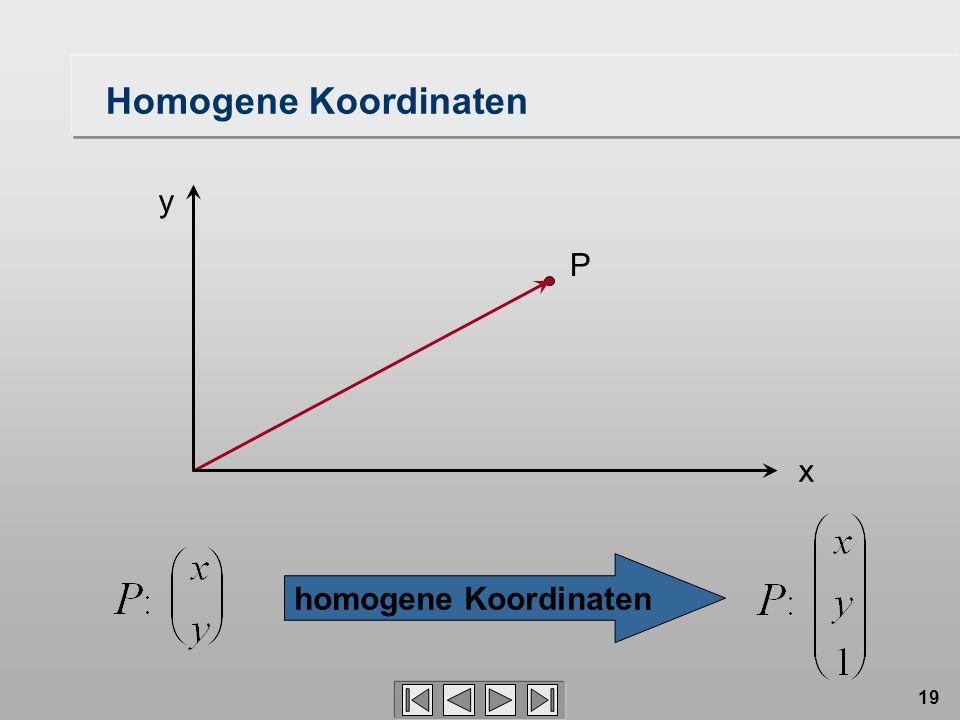 19 P homogene Koordinaten Homogene Koordinaten x y
