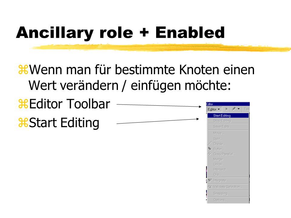Ancillary role zÄndern / Einfügen von sources und sinks: zWenn alle Knoten einer Feature Klasse den gleichen Wert haben sollen