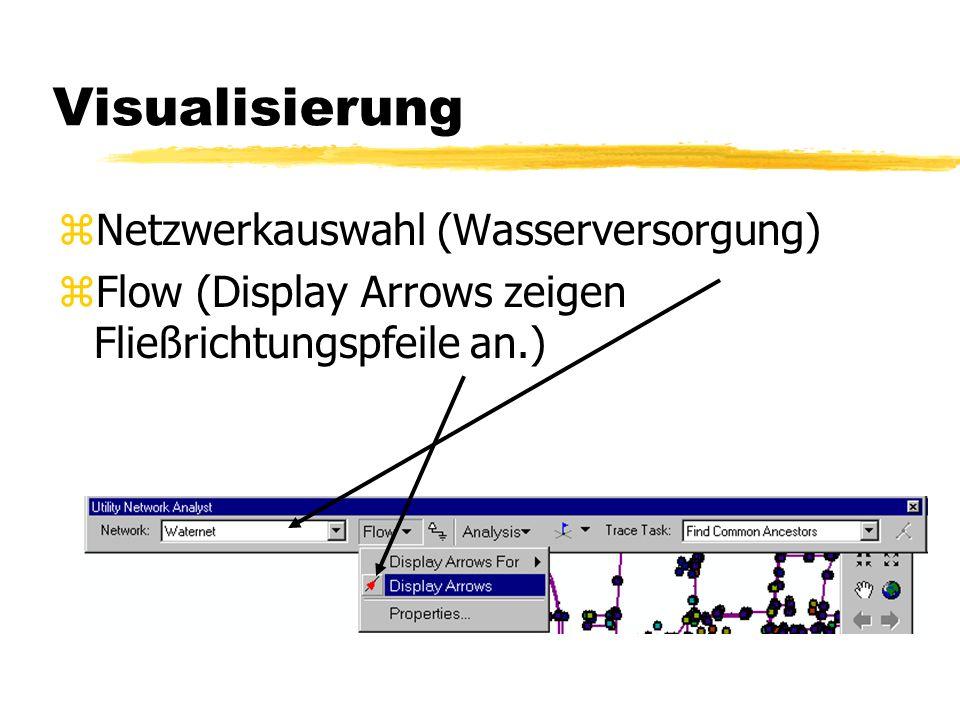 5. Fließrichtung im Ansatz zVisualisierung zFür die Visualisierung des Flusses müssen wir erst eine neue Toolbar einführen: zDie Utility Network Analy