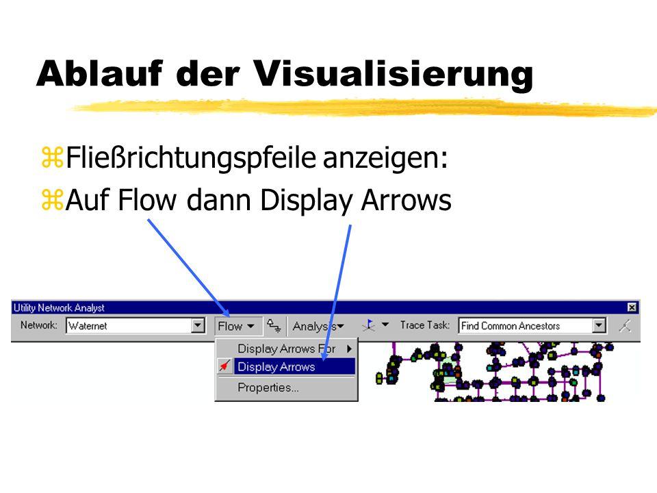Ablauf der Visualisierung z1. Die Fließrichtung setzen: z Editor-Start Editing zSet Flow Direction zArc Map berechnet den Netzwerkfluss erst wenn man