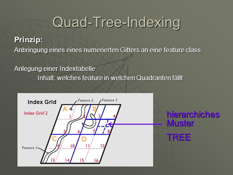 Quad-Tree-Indexing Prinzip: Anbringung eines eines numerierten Gitters an eine feature class Anlegung einer Indextabelle Inhalt: welches feature in we