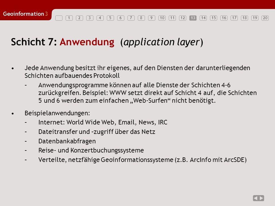 1234567891011121314151617181920 Geoinformation3 13 Schicht 7: Anwendung (application layer) Jede Anwendung besitzt ihr eigenes, auf den Diensten der d