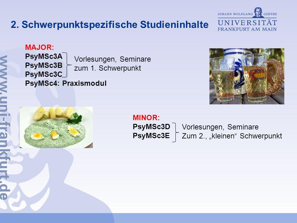 2. Schwerpunktspezifische Studieninhalte MAJOR: PsyMSc3A PsyMSc3B PsyMSc3C PsyMSc4: Praxismodul Vorlesungen, Seminare zum 1. Schwerpunkt MINOR: PsyMSc