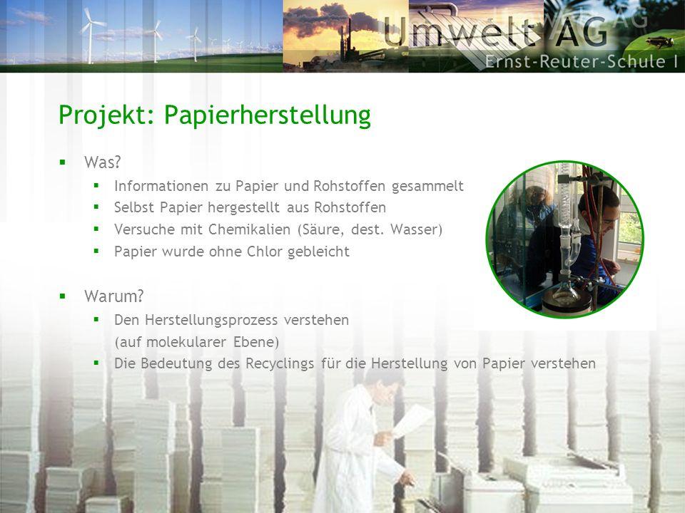 Projekt: Papierherstellung Was? Informationen zu Papier und Rohstoffen gesammelt Selbst Papier hergestellt aus Rohstoffen Versuche mit Chemikalien (Sä