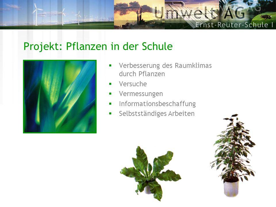Projekt: Pflanzen in der Schule Verbesserung des Raumklimas durch Pflanzen Versuche Vermessungen Informationsbeschaffung Selbstständiges Arbeiten