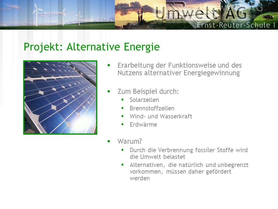 Erarbeitung der Funktionsweise und des Nutzens alternativer Energiegewinnung Zum Beispiel durch: Solarzellen Brennstoffzellen Wind- und Wasserkraft Er