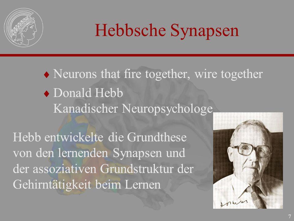 7 Hebbsche Synapsen Neurons that fire together, wire together Donald Hebb Kanadischer Neuropsychologe Hebb entwickelte die Grundthese von den lernende