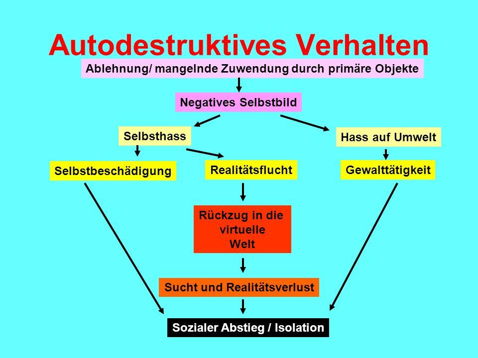 Autodestruktives Verhalten Ablehnung/ mangelnde Zuwendung durch primäre Objekte Negatives Selbstbild Selbsthass Hass auf Umwelt Selbstbeschädigung Rea