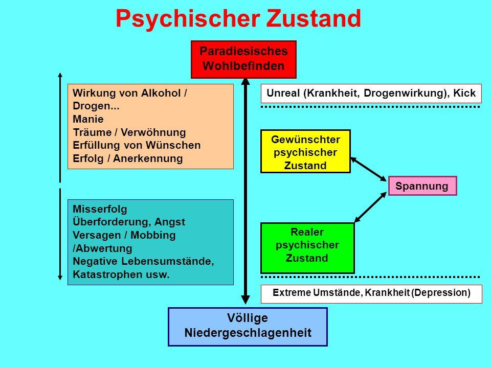 Paradiesisches Wohlbefinden Völlige Niedergeschlagenheit Gewünschter psychischer Zustand Realer psychischer Zustand Spannung Wirkung von Alkohol / Dro