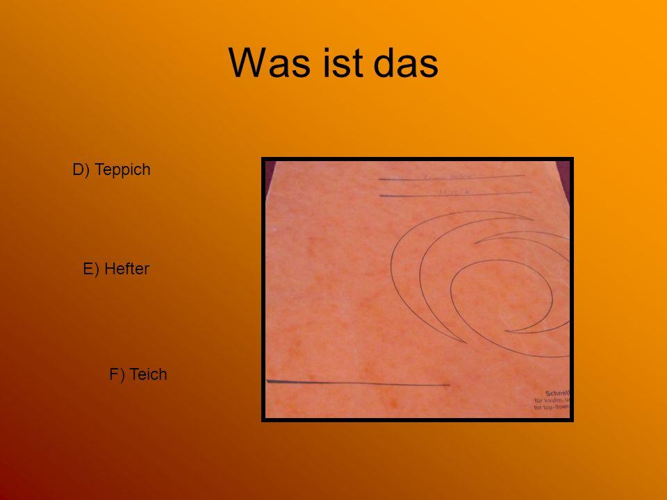 Was ist das E) Hefter D) Teppich F) Teich