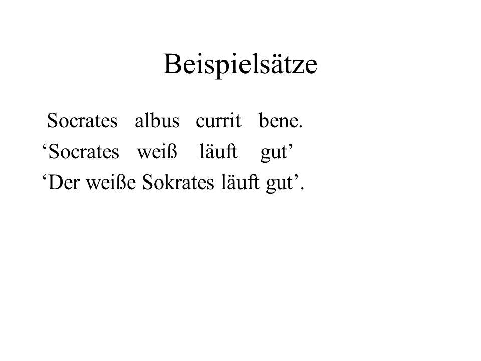 Beispielsätze Socrates albus currit bene. Socrates weiß läuft gut Der weiße Sokrates läuft gut.