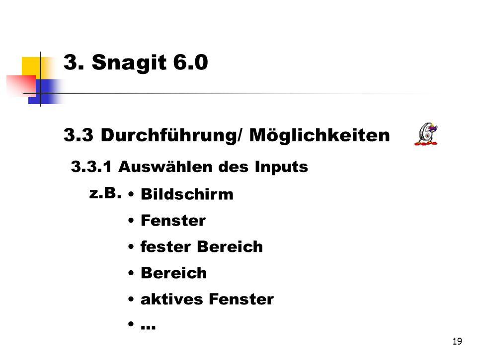 19 3.3 Durchführung/ Möglichkeiten 3.3.1 Auswählen des Inputs Bildschirm Fenster fester Bereich Bereich aktives Fenster 3.