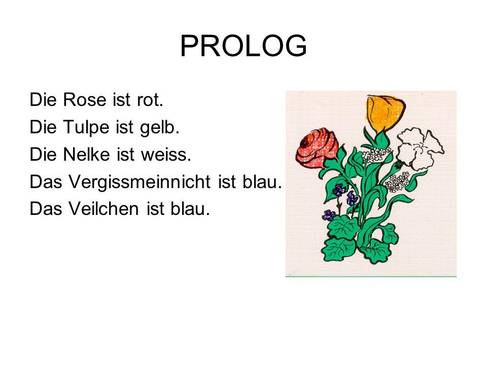 PROLOG Die Rose ist rot. Die Tulpe ist gelb. Die Nelke ist weiss. Das Vergissmeinnicht ist blau. Das Veilchen ist blau.