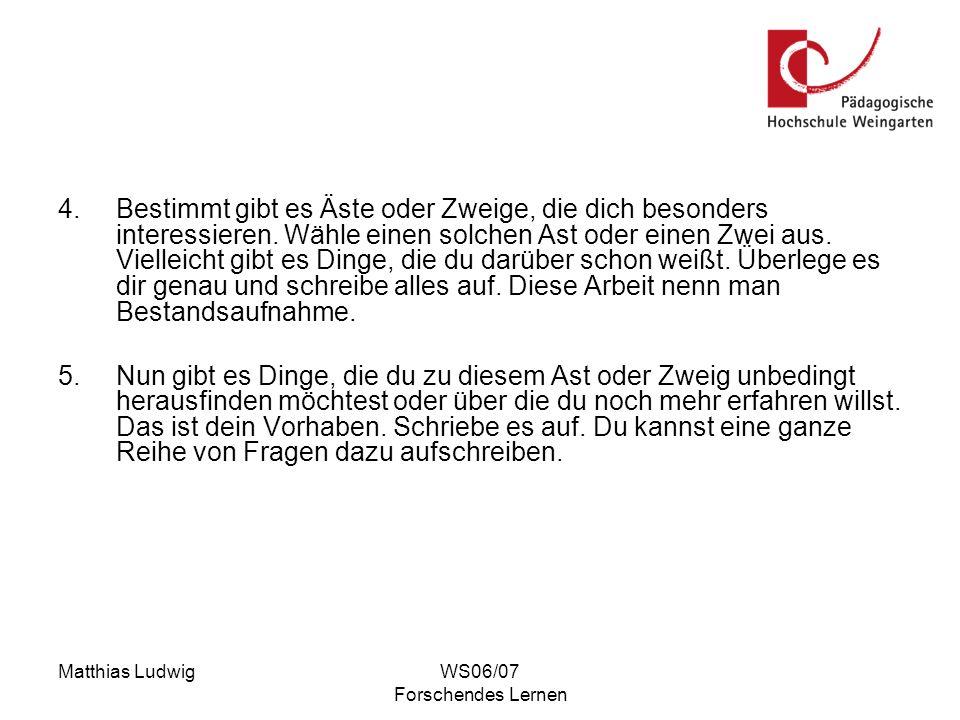 Matthias LudwigWS06/07 Forschendes Lernen Mögliches unterrichtliches Vorgehen: 1.