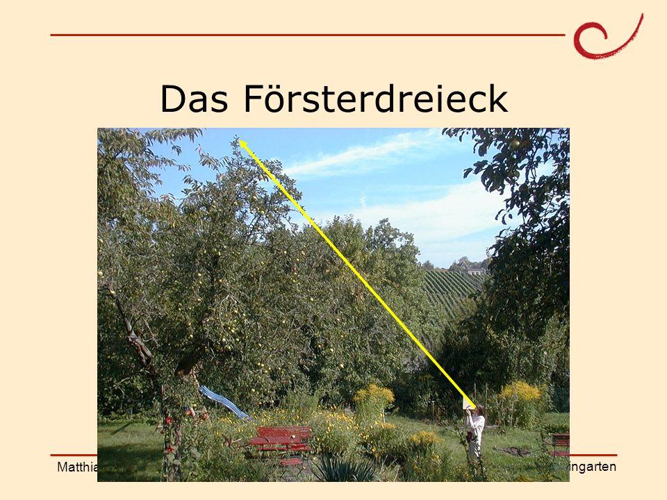 PH Weingarten Matthias LudwigShanghai Workshop Höhenmessung mit Spiegel
