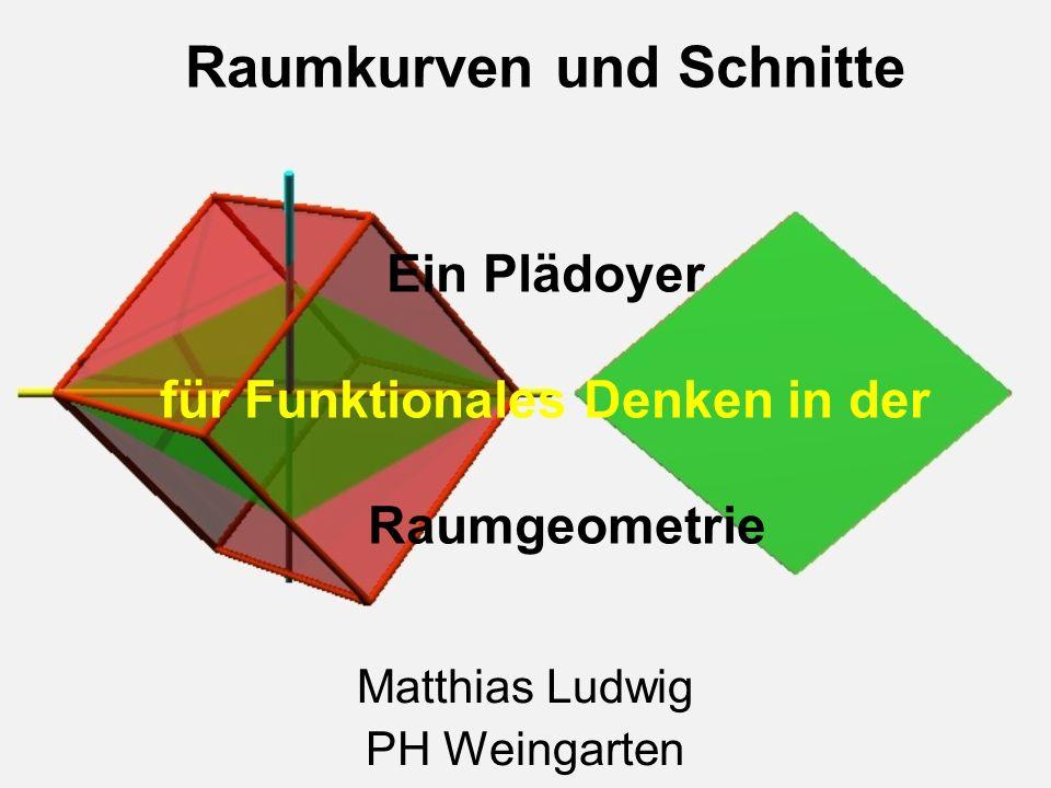 Matthias Ludwig Bestandsaufnahme Funktionen fast nur eindimensional Formeln als Funktionen in der Raumgeometrie Kaum dynamische Prozesse Keine Bewegungen in der Raumgeometrie Viel Potential vorhanden