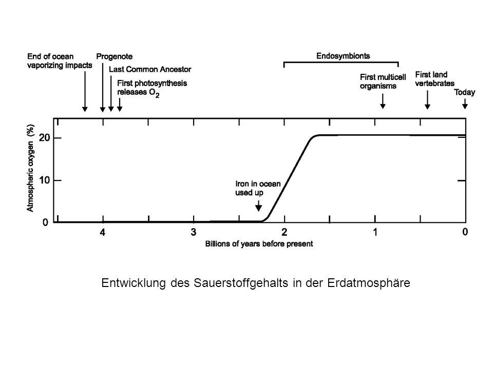 Entwicklung des Sauerstoffgehalts in der Erdatmosphäre