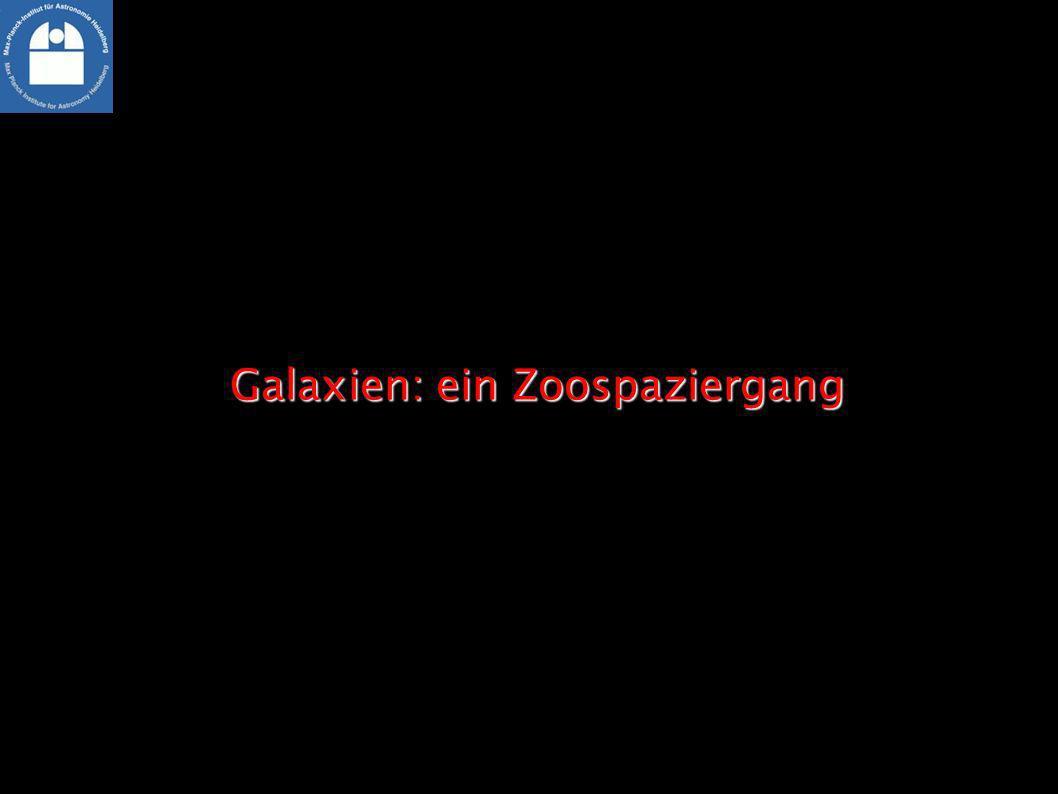 Galaxien: ein Zoospaziergang