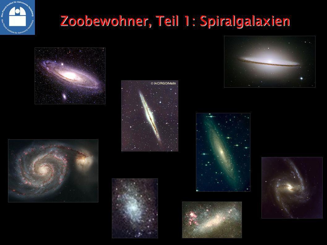 Zoobewohner, Teil 1: Spiralgalaxien