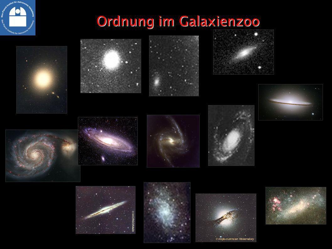 Ordnung im Galaxienzoo