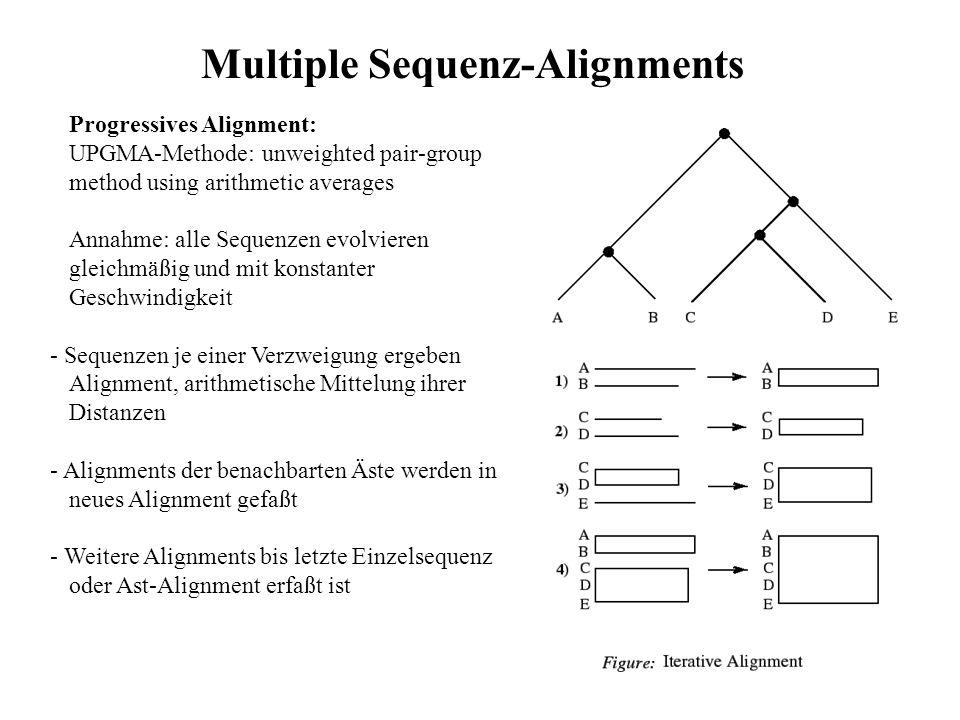 Progressives Alignment: UPGMA-Methode: unweighted pair-group method using arithmetic averages Annahme: alle Sequenzen evolvieren gleichmäßig und mit k