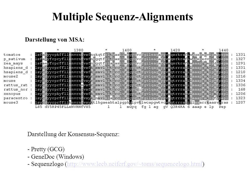 Darstellung von MSA: Darstellung der Konsensus-Sequenz: - Pretty (GCG) - GeneDoc (Windows) - Sequenzlogo (http://www.lecb.ncifcrf.gov/~toms/sequencelo