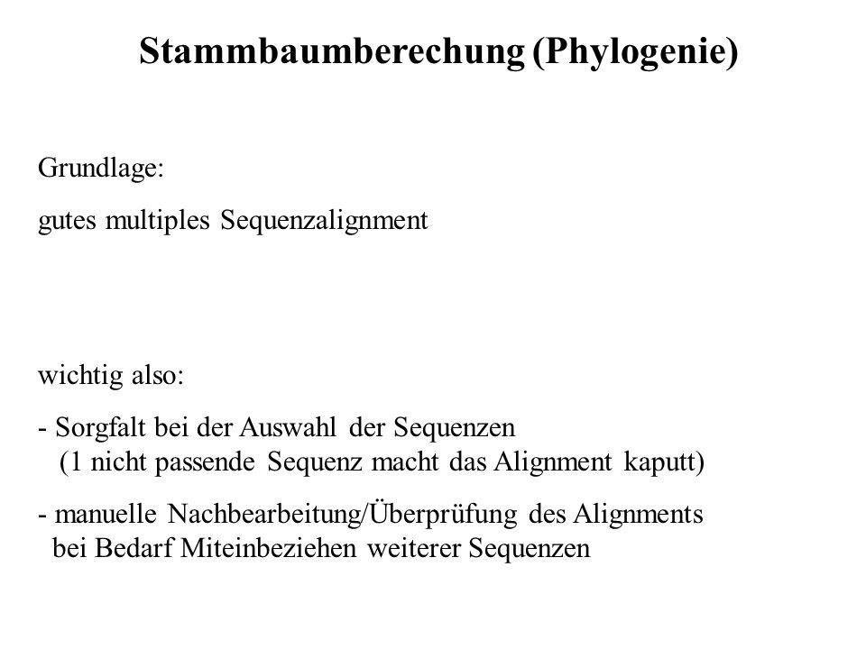 Stammbaumberechung (Phylogenie) Grundlage: gutes multiples Sequenzalignment wichtig also: - Sorgfalt bei der Auswahl der Sequenzen (1 nicht passende S