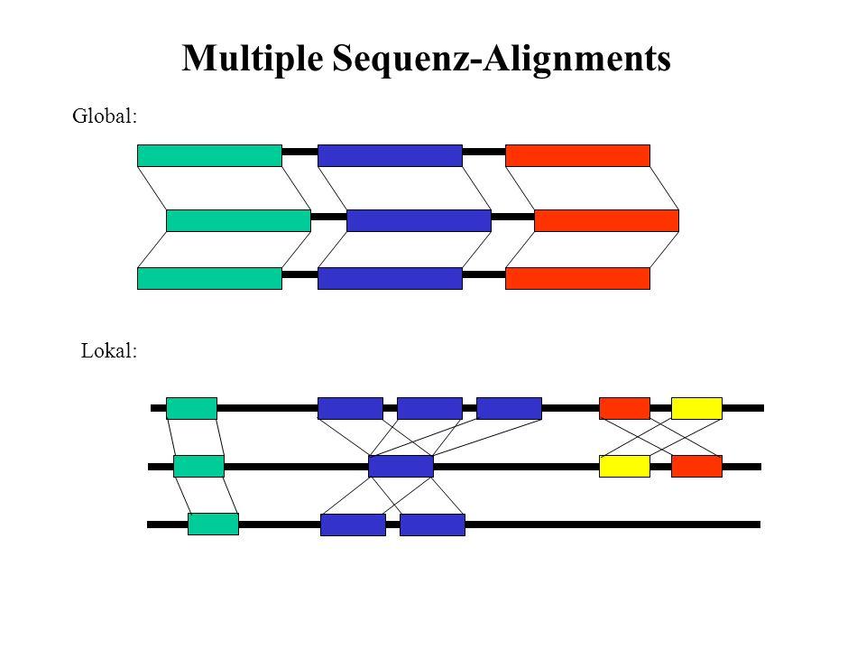Optimale Lösungsansätze (dynamisches Programmieren): Zeit- und Speicherbedarf wächst ins Unermessliche Bei einer Sequenzlänge L und n Sequenzen: Speicherbedarf: O(L n ), Zeitbedarf: O(2 n L n ).