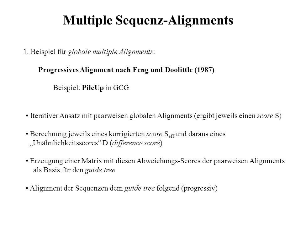 1. Beispiel für globale multiple Alignments: Progressives Alignment nach Feng und Doolittle (1987) Beispiel: PileUp in GCG Iterativer Ansatz mit paarw