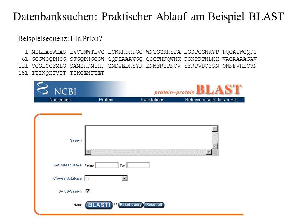 Datenbanksuchen: Praktischer Ablauf am Beispiel BLAST 3. GenBank-Flatfile-Sequenz / gcg-Format ohne Header: Üblicherweise aus GenBank-Ausgabe bzw. aus