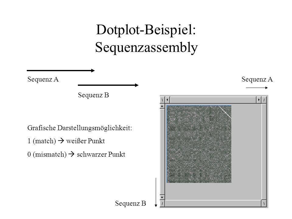 Einfachster Algorithmus für Alignments: Dotplot M [i,j] wird als 2-dimensionale Matrix dargestellt ACCGTA A11 G1 C11 G1 T1 A11 Längste Diagonale ohne