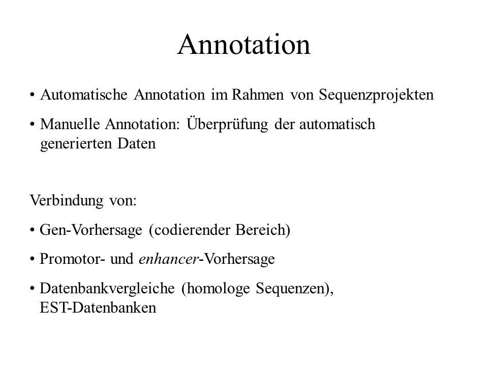 Annotation Aufgaben: Umwandlung in Datenbankformate Veröffentlichung der Sequenzdaten Kommentierung Verbindung mit weiteren Informationen z. B. Genstr