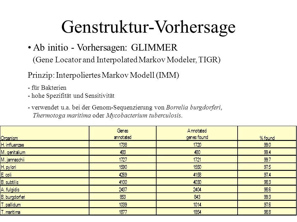Ab initio - Vorhersagen: GENSCAN ( 1997, Christopher Burge, http://genes.mit.edu/GENSCAN.html) Prinzip: Fourier – Transformation. Auswertung der 3 – B