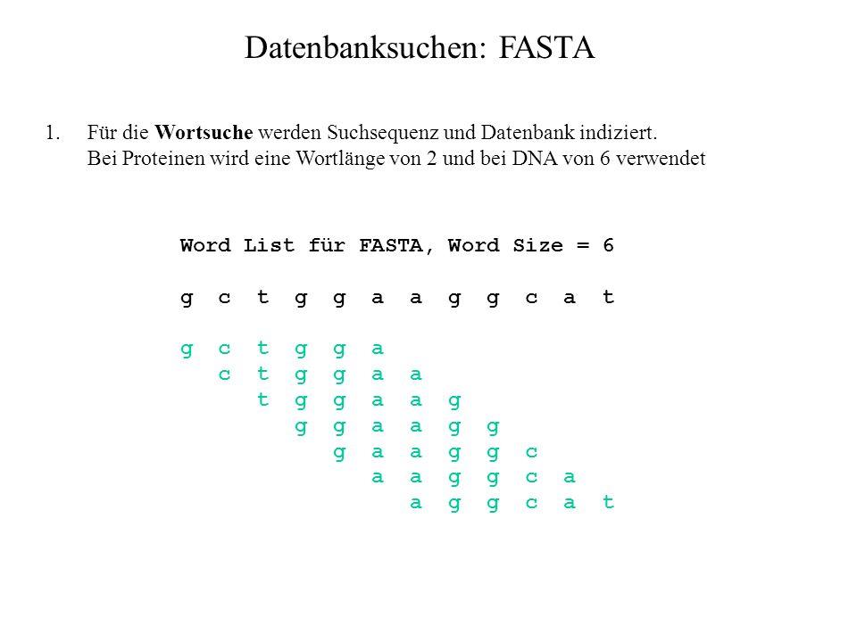 Datenbanksuchen: FASTA Ablauf: Sequenzen der Datenbank werden mehrmals mit der Suchsequenz verglichen, zunächst grob, dann mit feineren Methoden. In j