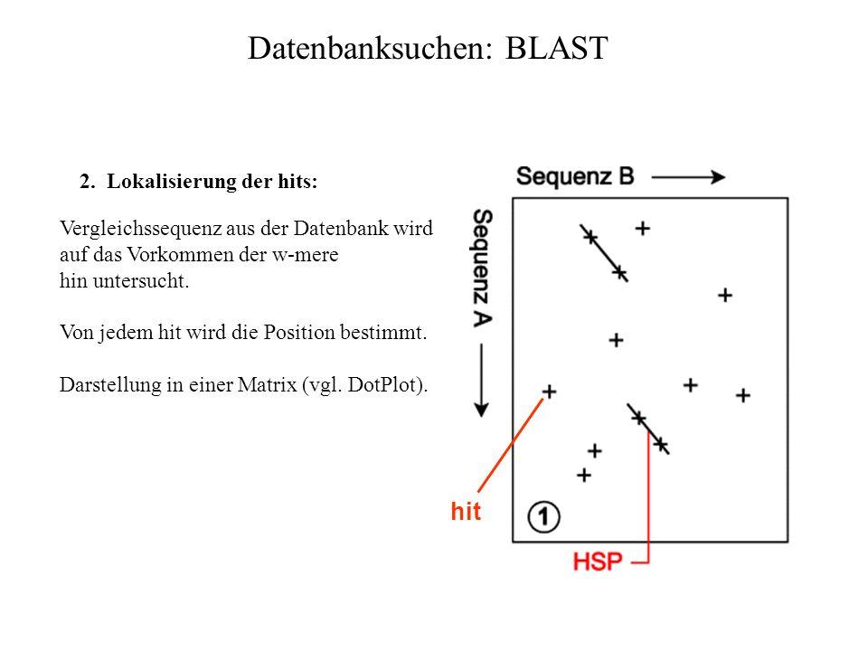 Datenbanksuchen: BLAST Ablauf: 1.Präprozessierung: Aus der Eingabesequenz wird die Menge aller Teilworte TW mit Länge w gebildet. Standard: Proteine: