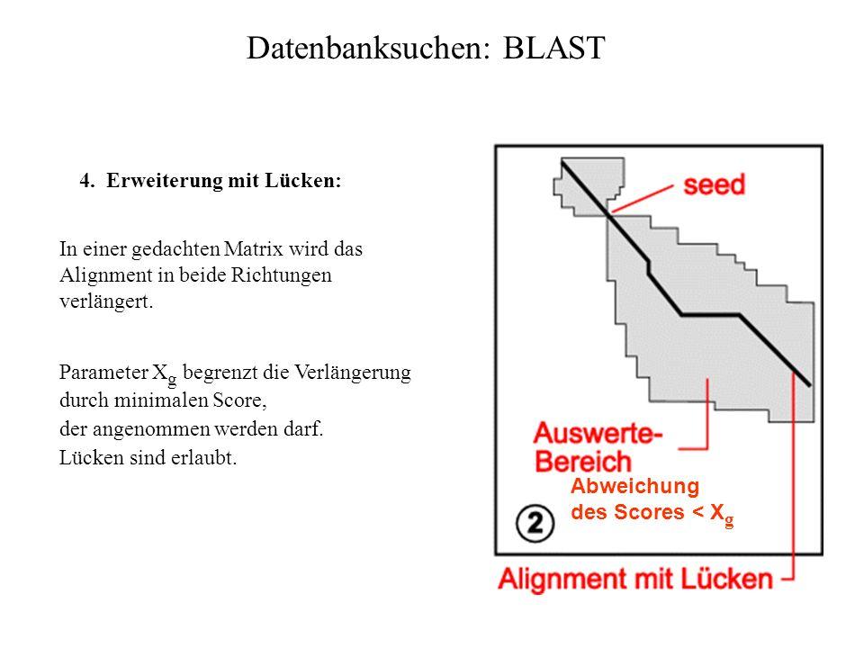 3. Bestimmung der HSPs: Welche Paare von hits liegen auf einer Diagonale der Matrix? Datenbanksuchen: BLAST Berücksichtigung des räumlichen Abstands A