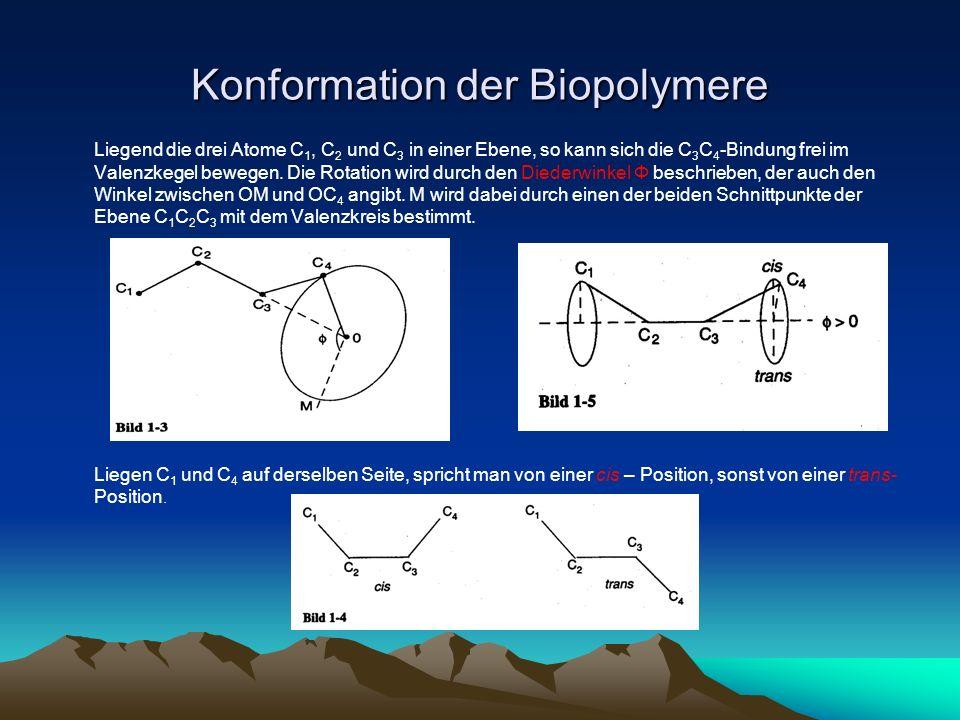 Konformation der Biopolymere Liegend die drei Atome C 1, C 2 und C 3 in einer Ebene, so kann sich die C 3 C 4 -Bindung frei im Valenzkegel bewegen. Di