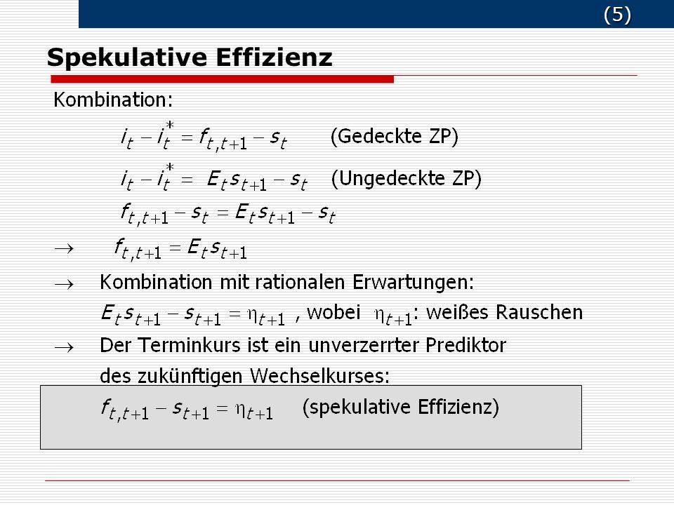 (5) (5) Spekulative Effizienz