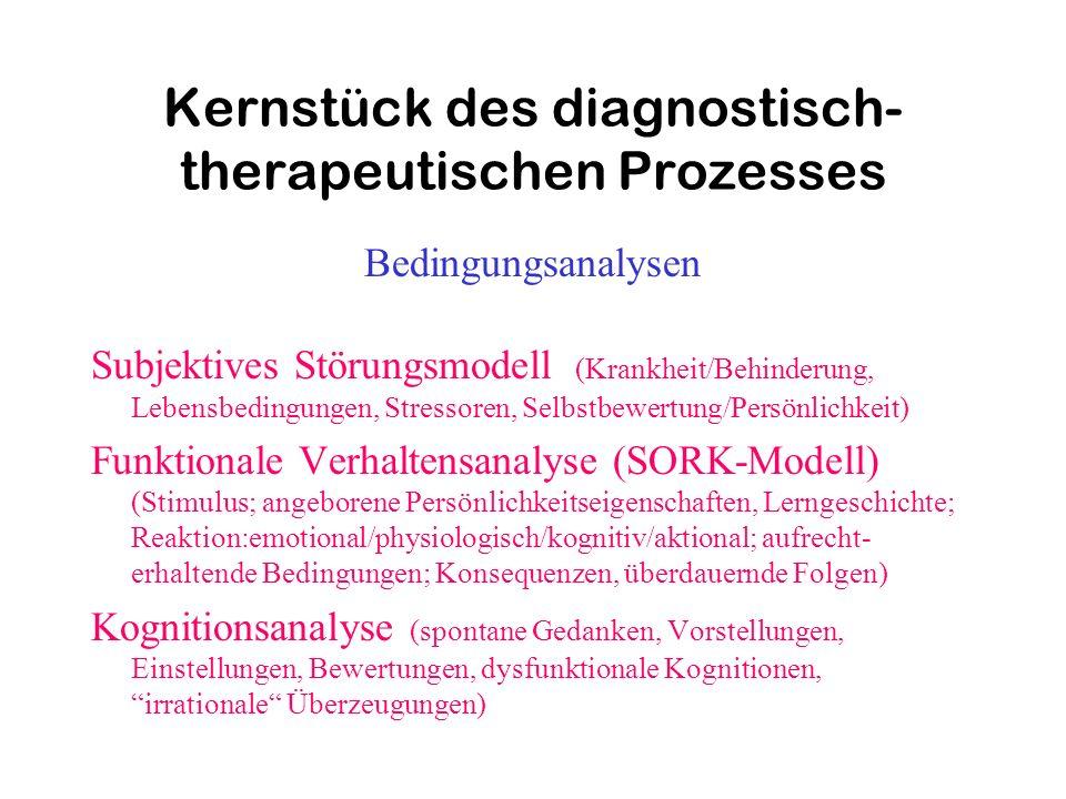 Kernstück des diagnostisch- therapeutischen Prozesses Bedingungsanalysen Subjektives Störungsmodell (Krankheit/Behinderung, Lebensbedingungen, Stresso
