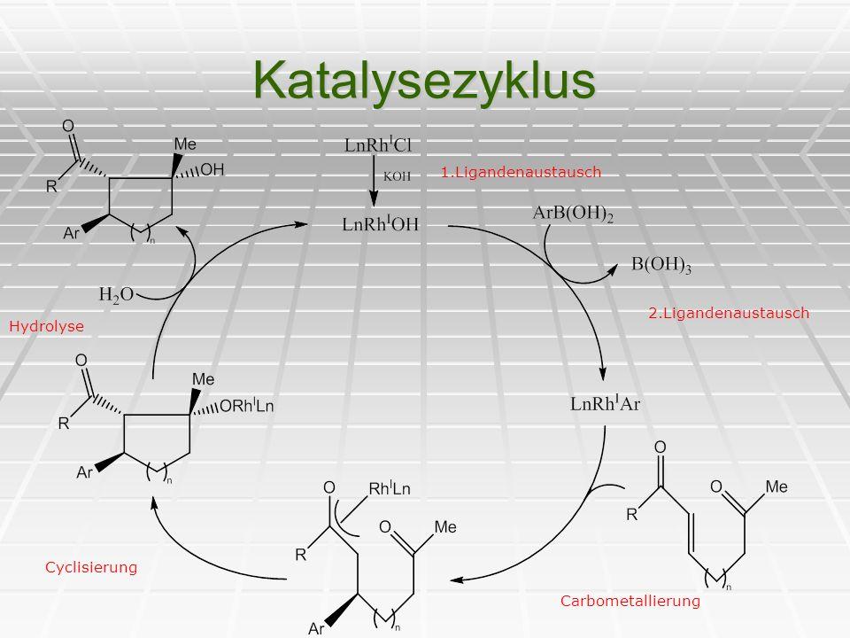 Katalysezyklus 2.Ligandenaustausch Carbometallierung Cyclisierung Hydrolyse 1.Ligandenaustausch