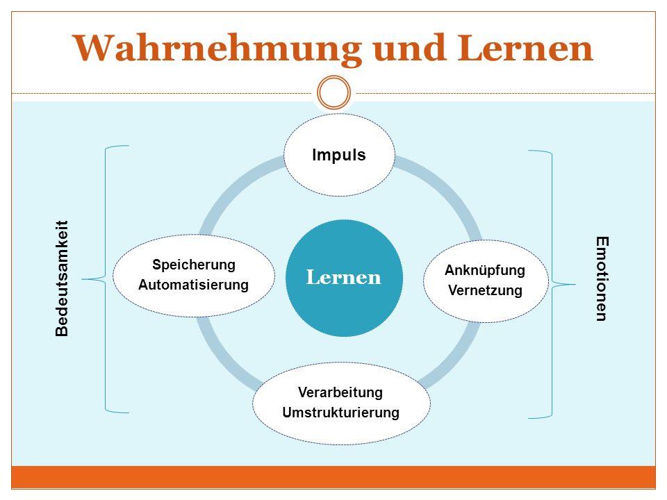 Wahrnehmung und Lernen Lernen Impuls Anknüpfung Vernetzung Verarbeitung Umstrukturierung Speicherung Automatisierung Bedeutsamkeit Emotionen