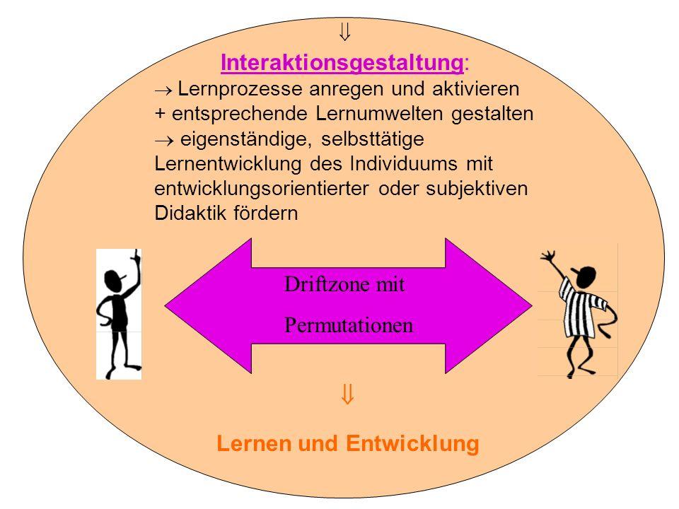 Driftzone mit Permutationen Interaktionsgestaltung: Lernprozesse anregen und aktivieren + entsprechende Lernumwelten gestalten eigenständige, selbsttä