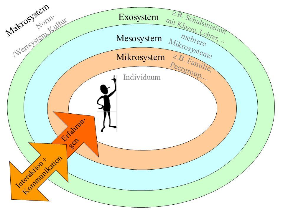 Exosystem Makrosystem Norm- /Wertsystem, Kultur Mesosystem Mikrosystem Individuum z.B. Schulsituation mit Klasse, Lehrer,... mehrere Mikrosysteme z.B.